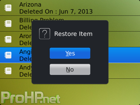Recycle Bin v1.2 for BlackBerry