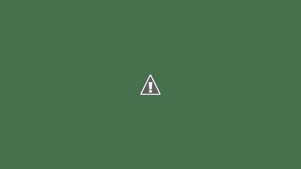 Kolkata christmas carnival