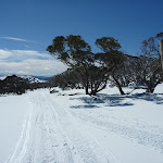 Walking down the Pocupine track in winter (300856)