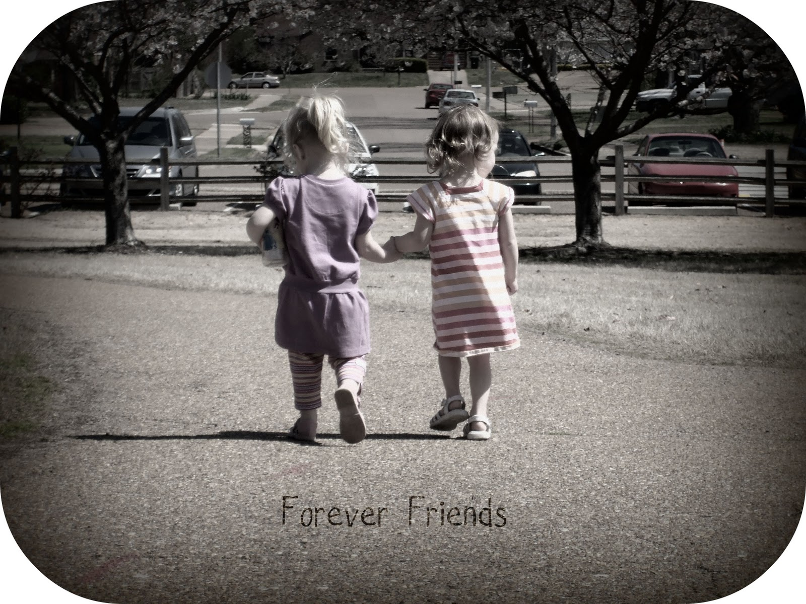 friends are forever essay