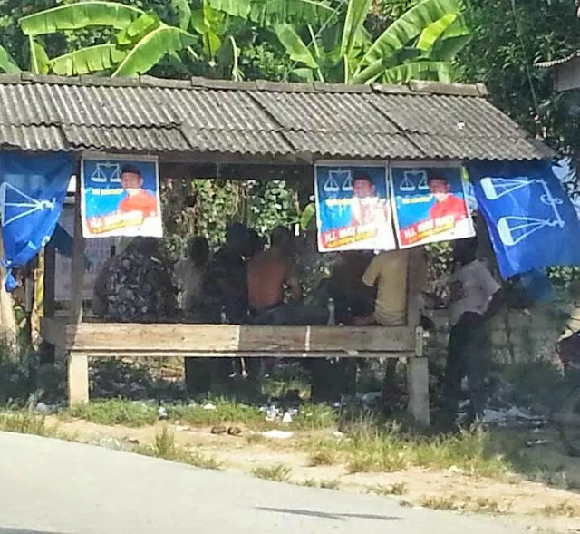 Penyokong Umno BN Main Daun Terup #prkpengkalankubor