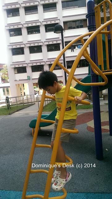 Doggie boy having fun at the playground