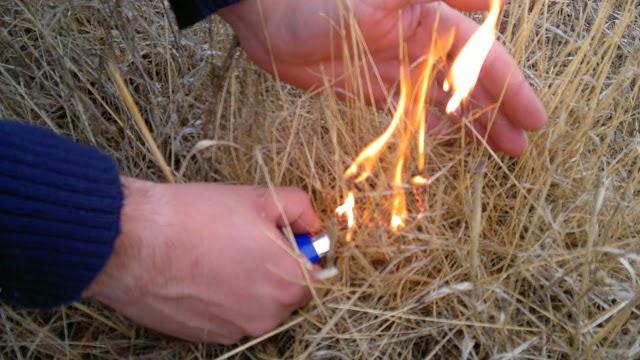 Detido presumível incendiário em Lamego