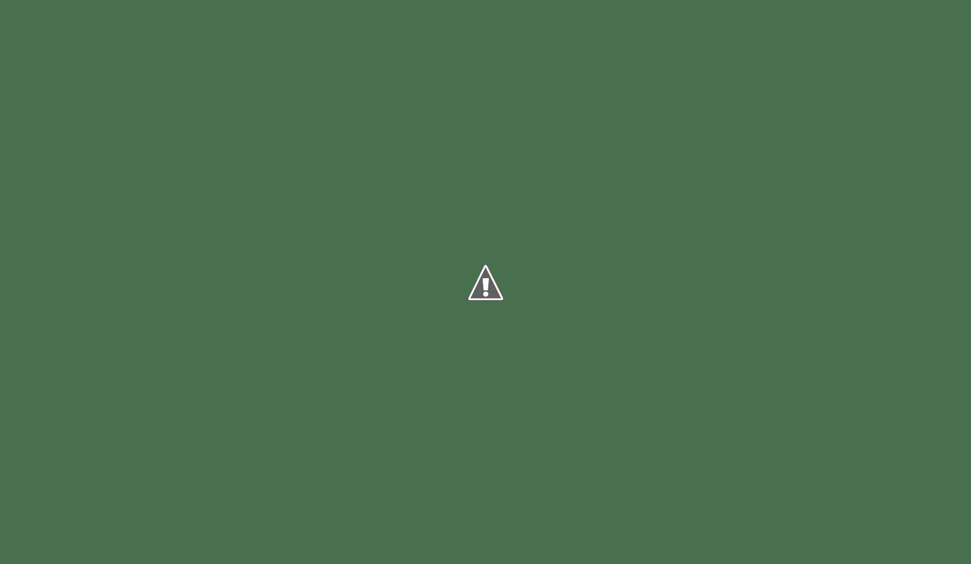 Outstanding Human Anatomy Free Online Course Ideas Human Anatomy