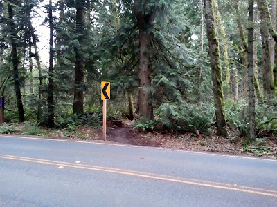 Northern end of the Grand Ridge Trail; across the street (Issaquah-Fall City Rd) from Duthie Park.