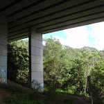 Under Roseville Bridge (134623)