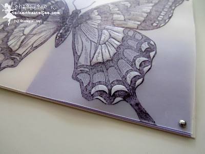 stampin up, swallowtail, miniklammern, vellum, pergament
