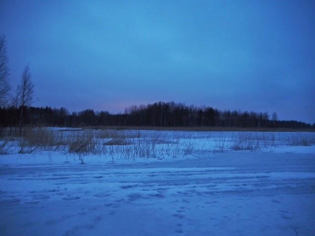 view, maisema, talvi, winter, suomi, lumi, snow, kylmä, cold, finland, nature, luonto, puut, trees,
