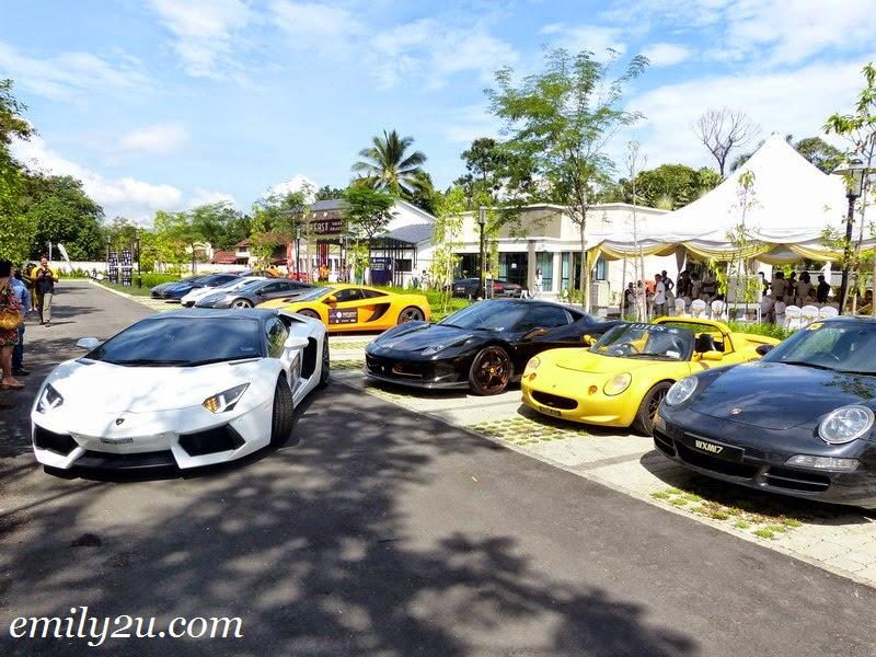 Andaman Supercars Charity Drive 2014