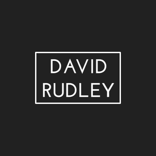 David Rudley 2 review