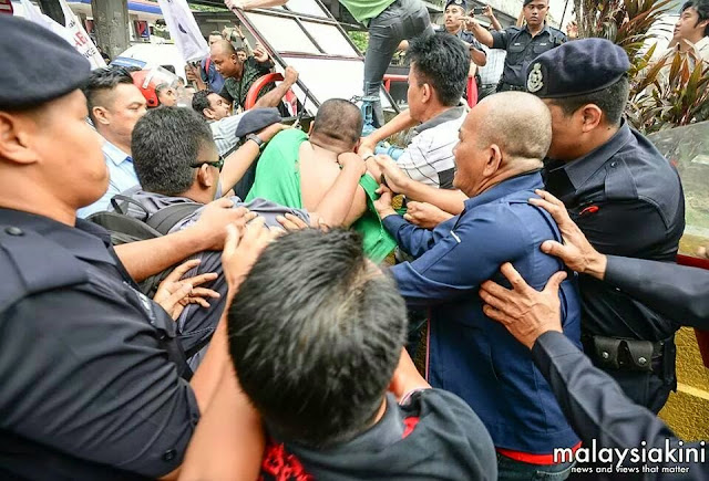 Beberapa ekor panda terlepas di depan HQ DAP