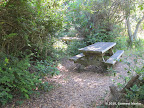 Picnic bench close to Heart's Desire Beach