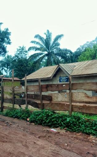 On the Road to Nsukka, Nigeria