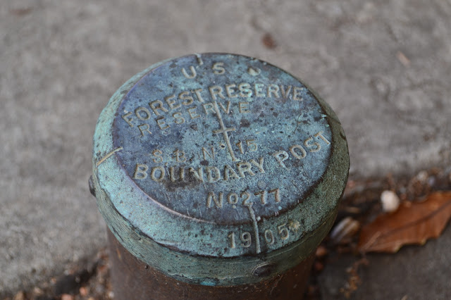 boundary marker for SB Forest Reserve