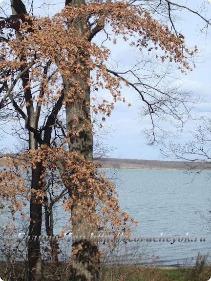 Поздняя осень в окрестностях Владивостока.