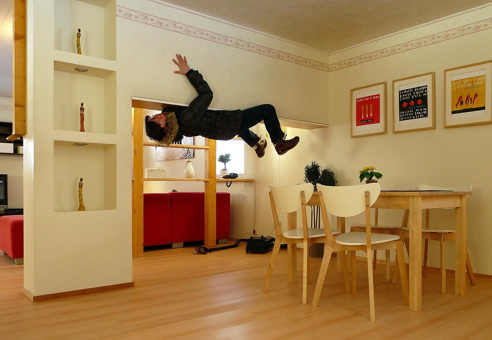 duett auf acht pfoten die welt steht kopf. Black Bedroom Furniture Sets. Home Design Ideas