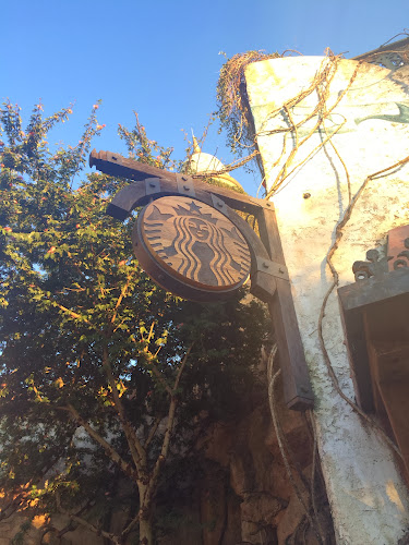 New Islands of Adventure Starbucks is now open at Universal Orlando (photos by Seth Kubersky)