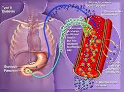 Mirtogenol Dalam Mirtoplus Efektif Untuk Penyembuhan Diabetes