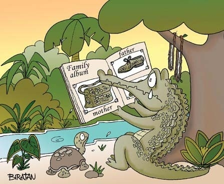 Crocodile Family Album