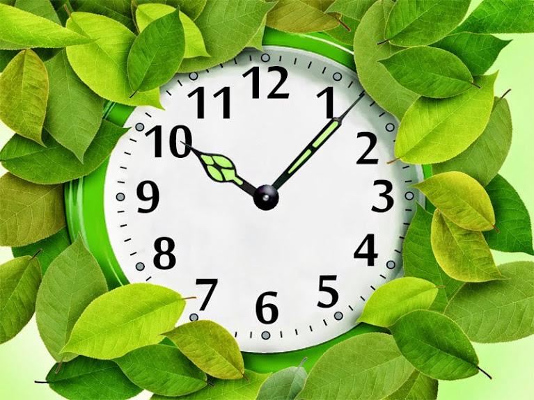 evergreen clock 5 cách thú vị giúp bạn tận dụng được thời gian rảnh