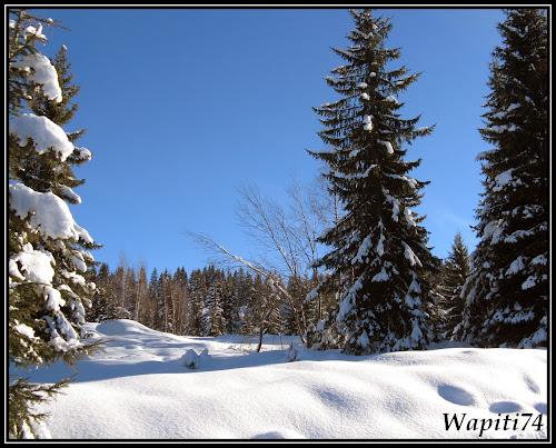 Balades aux sommets Wap_2987