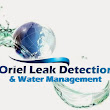 Oriel leak detection W