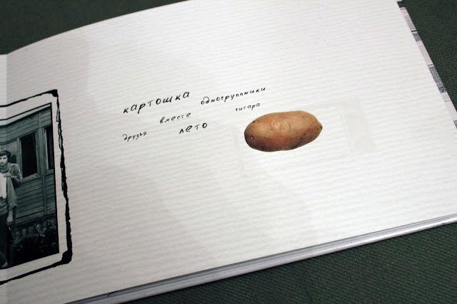 Разворот фотокниги, картошка