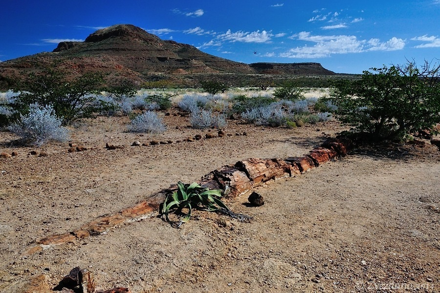 Namibia+2014_056.JPG