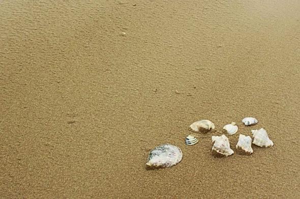 Тристихии. Море, шторм