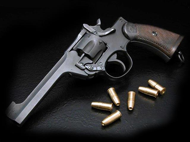 revolver  petrus