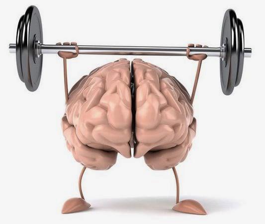 leer ejercita el cerebro