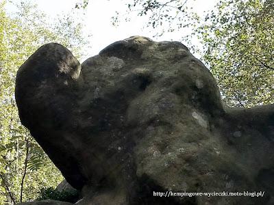 Na zdjęciu Słoń en face ze Szczelińca Wielkiego