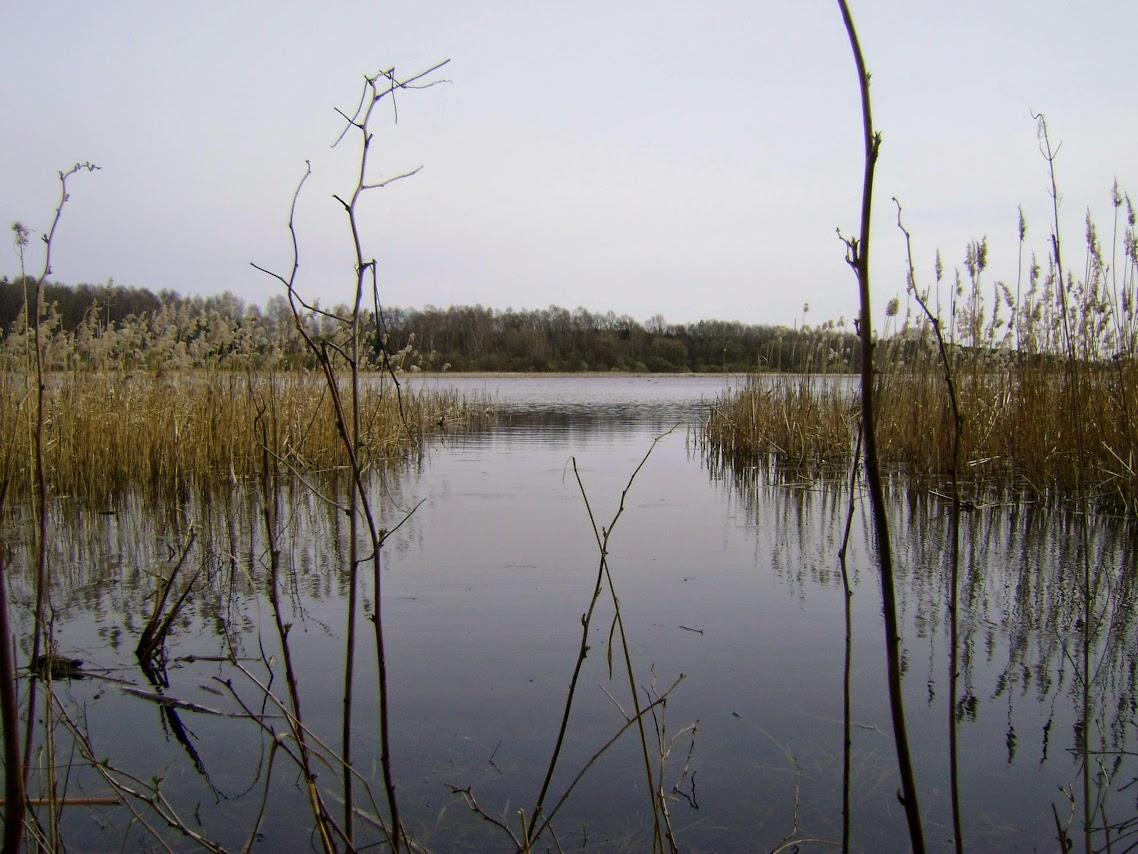 Dłutówek, jezioro