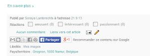 Le bouton de partage de Facebook, complétant la barre de partage des articles.