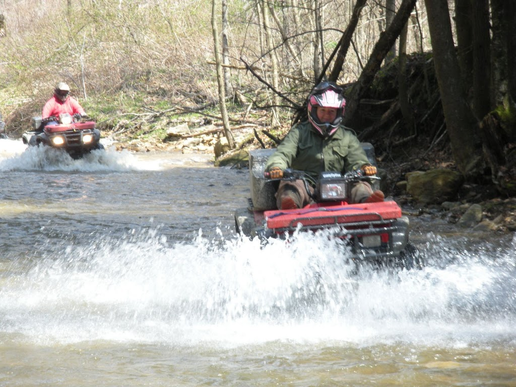 ATV Pic of the day - Page 2 Picture%2520126