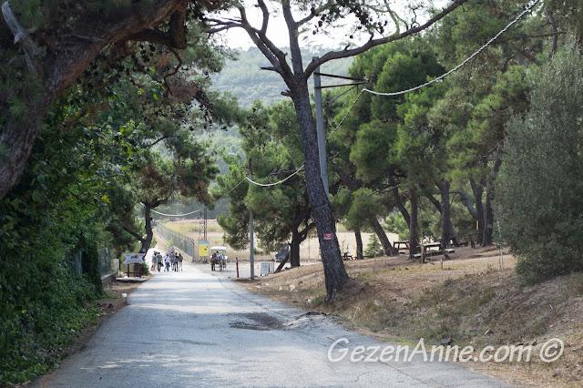 Heybeliada'nın güney kıyısındaki piknik alanı