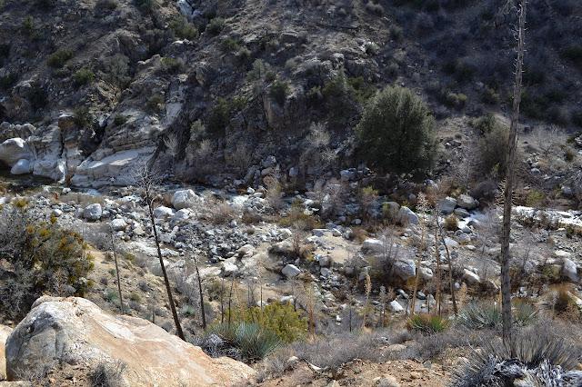 Piru Creek slightly in flood