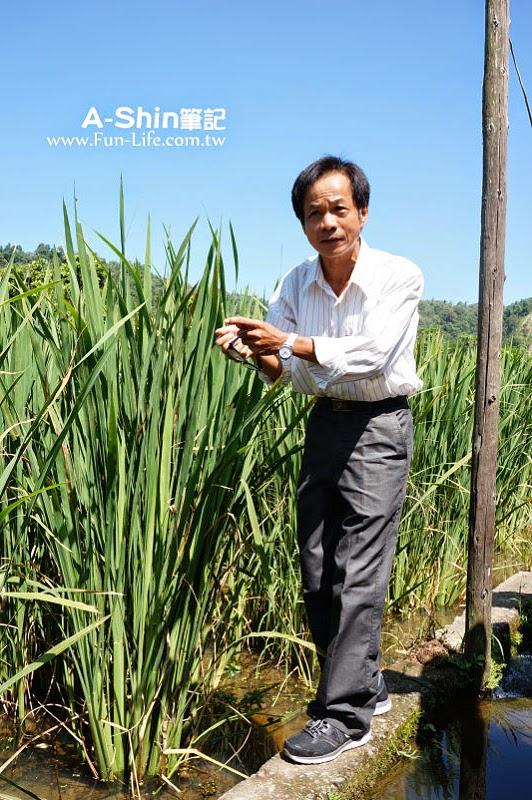 桃米休閒農業區2