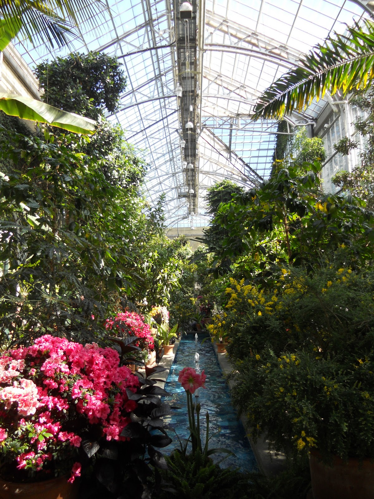 Here Is My Visit To The United States Botanic Garden (USBG) Located Along  The National Mall Near The Capitol Building. What Came Across My Mind When  I ...