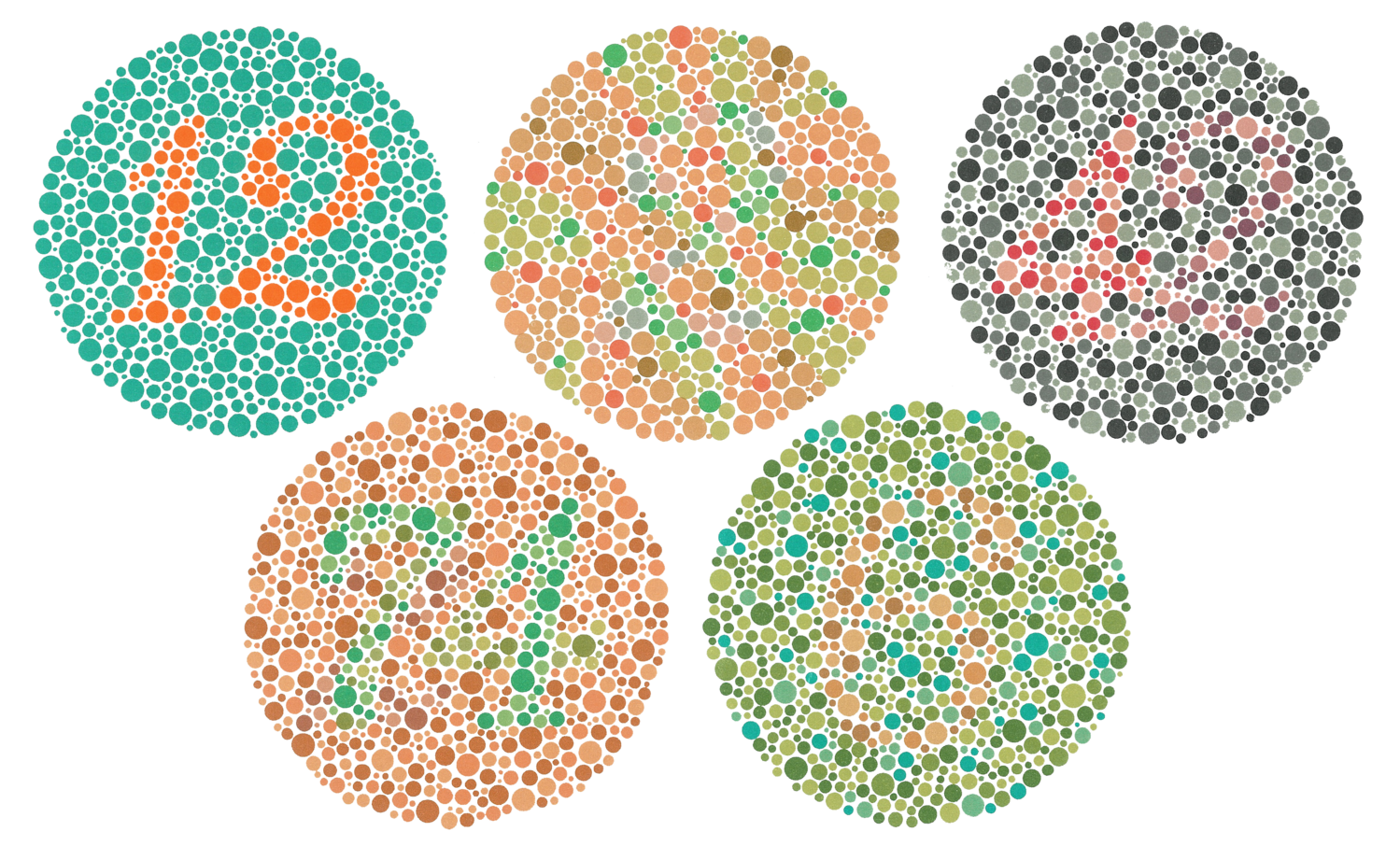 A Scientist Accidentally Developed Sunglasses That Could Correct Color Blindness