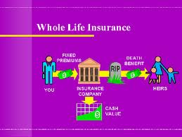 is a whole life insurance premium calculated stat life insurance