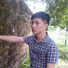 Nguyễn T.