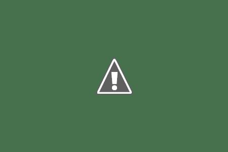 dimineata E dimineaţă ...