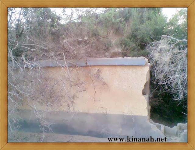 مواطن قبيلة الشقفة (الشقيفي الكناني) الماضي t8197-4.jpeg