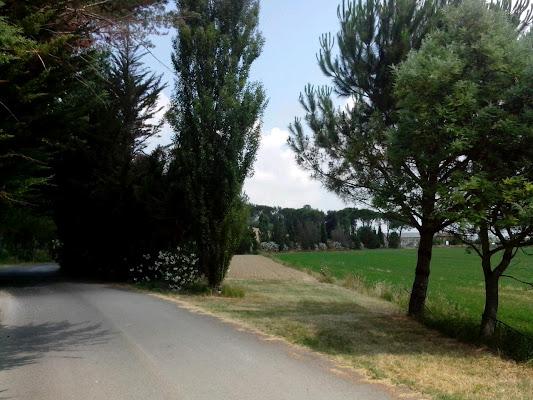 Agriturismo La Badia, Via Tabaccaia Di Badia 16, 57014 Collesalvetti Livorno, Italy