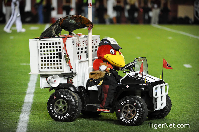 Clemson vs. South Carolina Photos - 2011, Football, South Carolina
