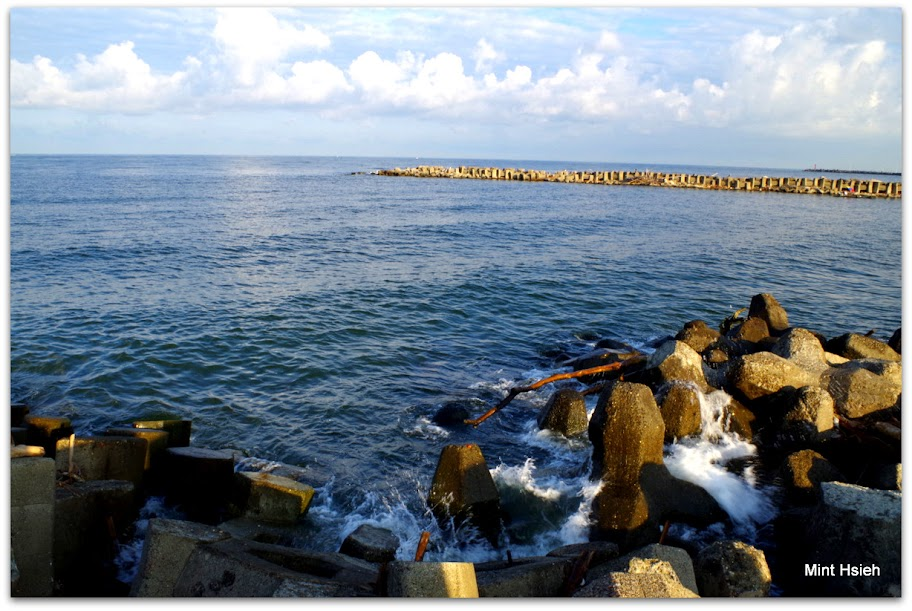 濕地沒開 只好拍人家釣魚@援中港 (圖10枚)