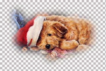 ChristmasPuppy-TaRacey.jpg