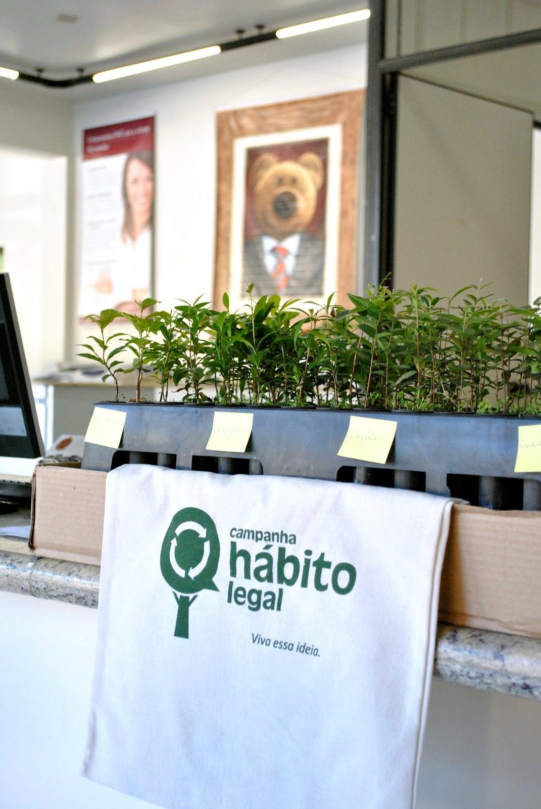 Hábito Legal: Carboni Fiat está distribuindo 150 mudas de árvores nativas para clientes habitolegal