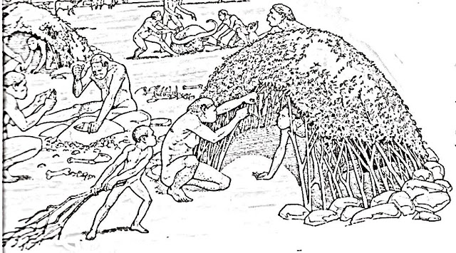 Prehistoric life coloring pages